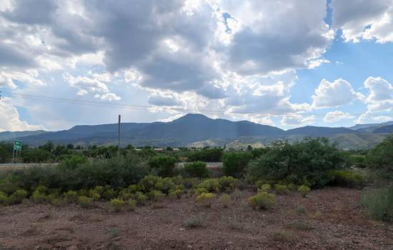 Vineyards at Cottonwood's Lot 14 Center View