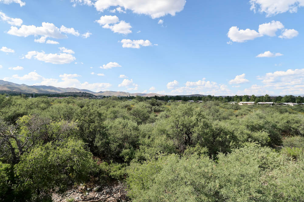 Vineyards at Cottonwood's Lot 21 Center View