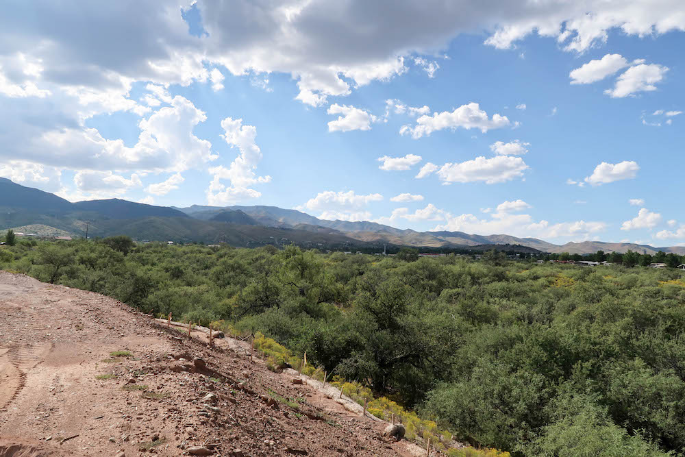 Vineyards at Cottonwood's Lot 25 Left View