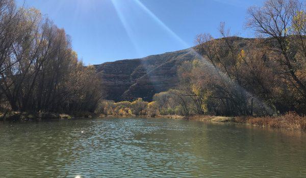 Verde River in Fall